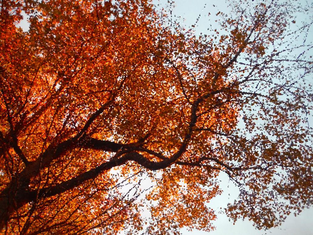 Autumnal Beauty by Weeglyfeesh