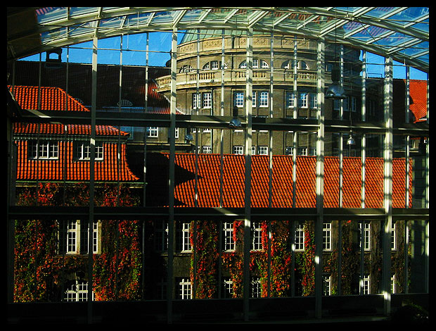 Hamburg University by LadyElleth