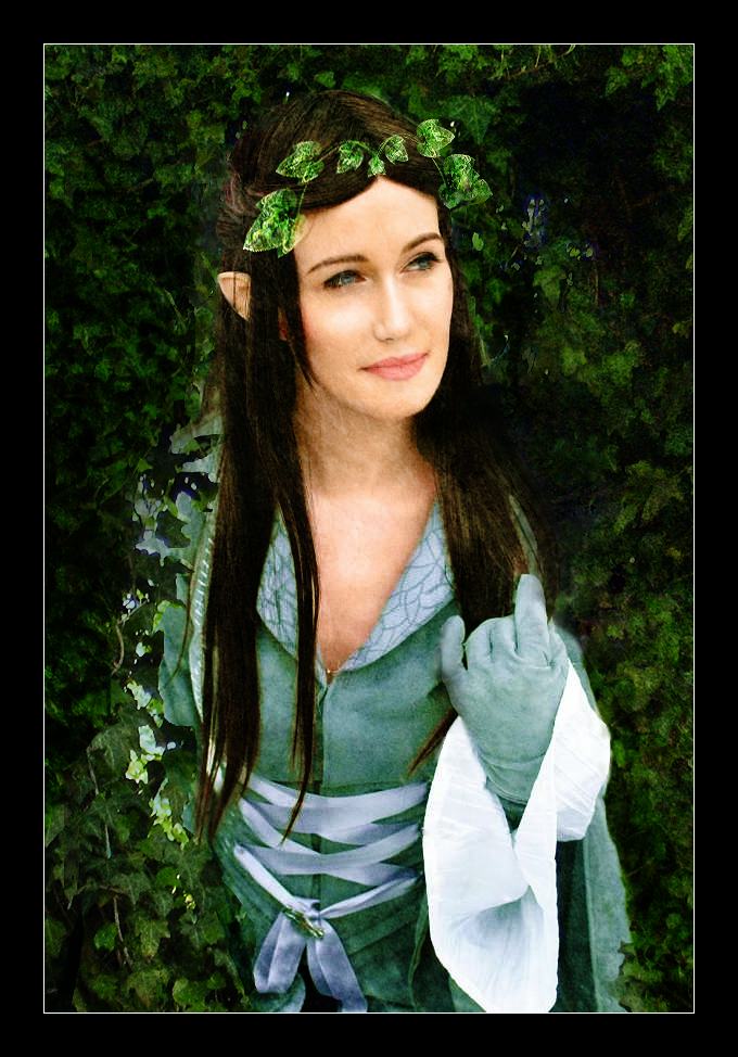 http://fc01.deviantart.net/fs71/f/2010/332/a/f/lotr__arwen_by_ladyelleth-d33t85s.png