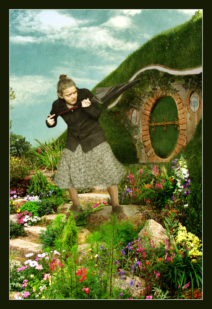 http://th00.deviantart.net/fs70/PRE/i/2010/335/d/5/lotr__lobelia_sackvillebaggins_by_ladyelleth-d340nj4.png