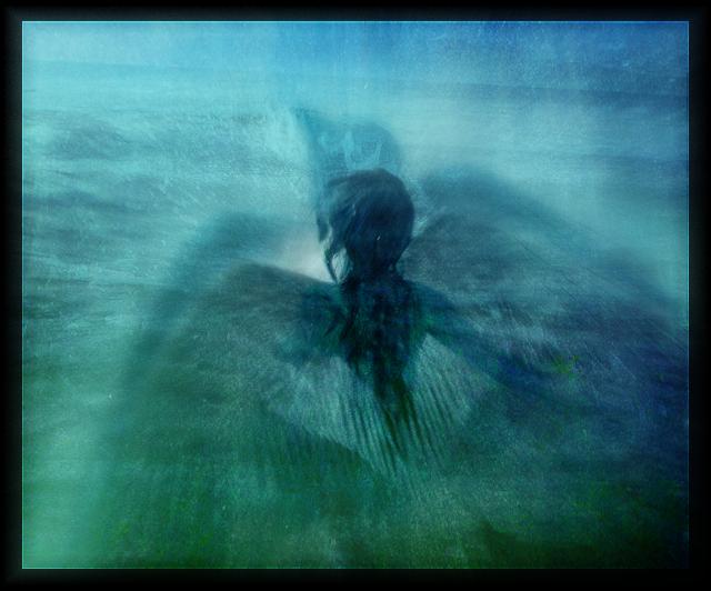 http://fc07.deviantart.net/fs17/f/2007/159/1/2/Silmarillion__Elwing_Rising_by_LadyElleth.png