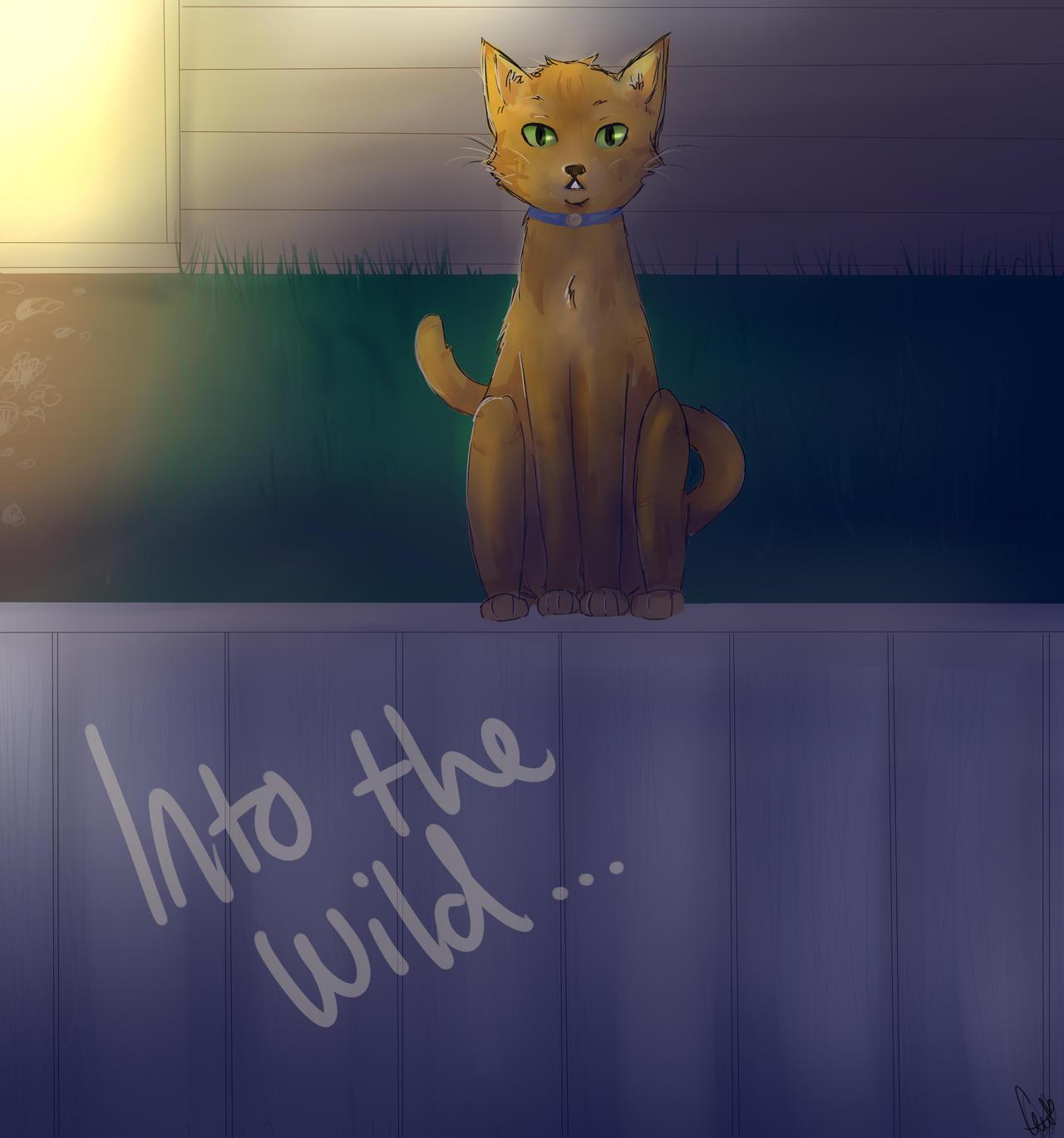 Warriors Into The Wild Dra Level: Warrior Cats: Into The Wild By Choustar On DeviantArt