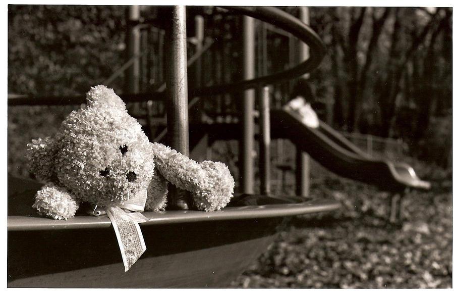 Dizzy Bear