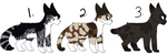-Open- (1/3) Cheap cat adopts by cooladoptsandmore
