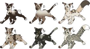 -CLOSED-  OTA cat adopts