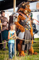 Jaru Drachenfest 2013 - standing at the arena by poisonmilow