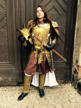 Kingsguard's armor