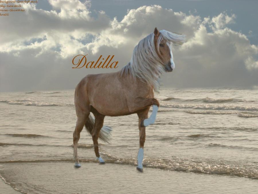 ^ Twilightstars ^ horses Dalilla_Manip_by_luna212