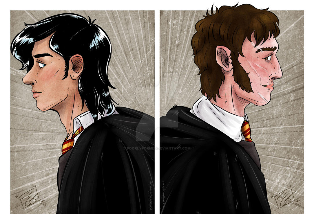 Remus and Sirius by cathybytes