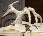 Growing From A Book