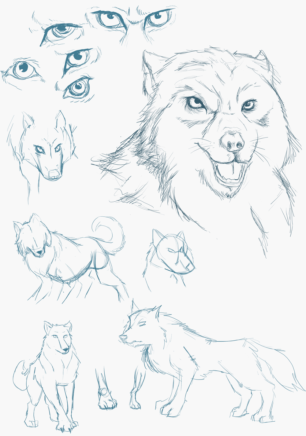 Sketch Dump: Wolves