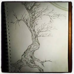 Tree. by iceycreams