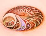 Spirals in spirals in spirals