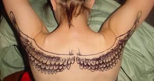 wings by spunkymonkey