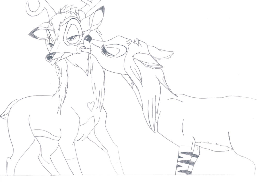 Deer sex drawing