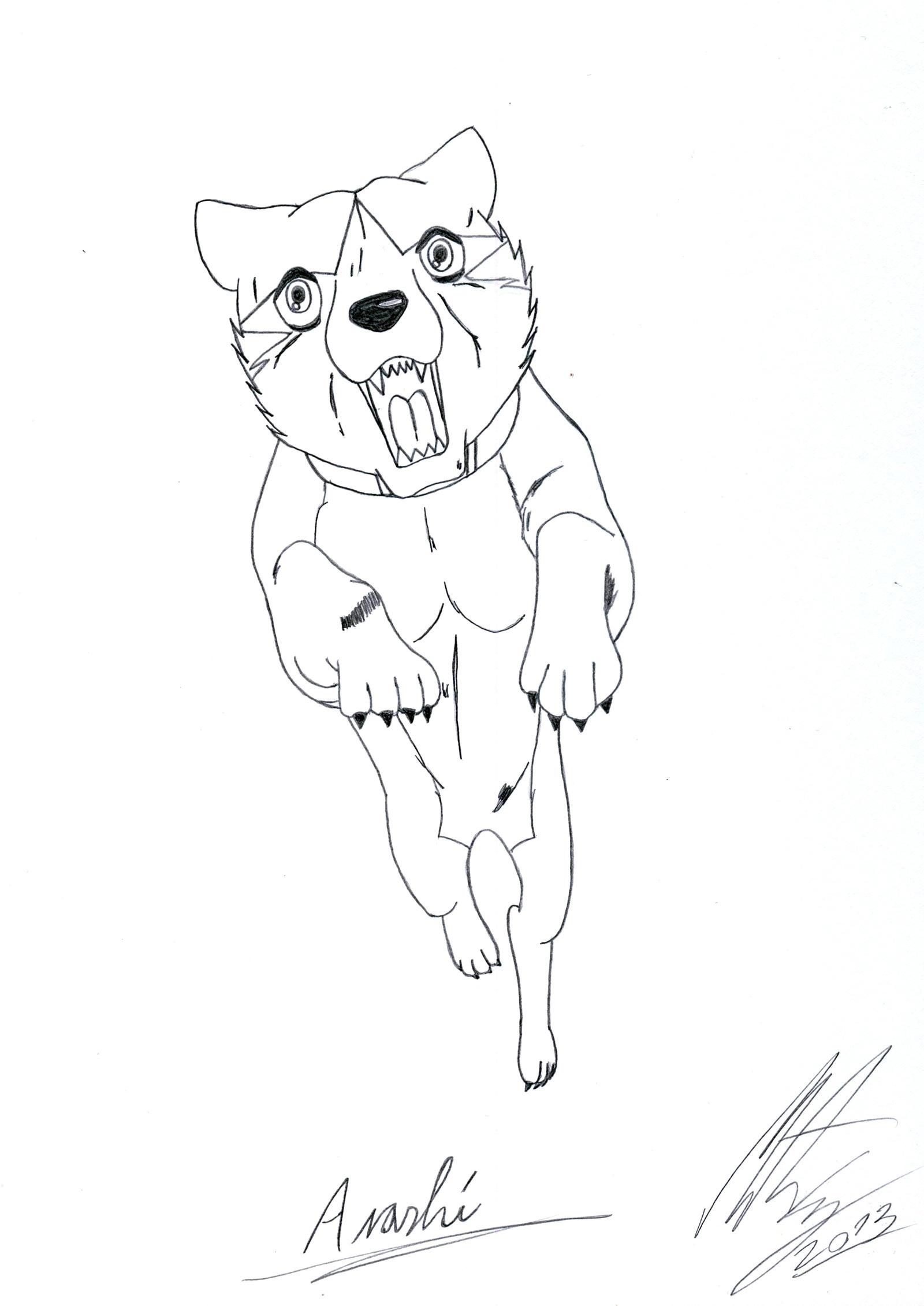 My Ginga OC - Arashi by MortenEng21