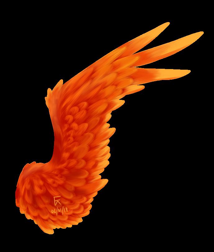 Phoenix Wing by Kouramiki