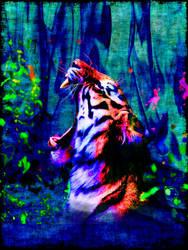wild by Scoofy