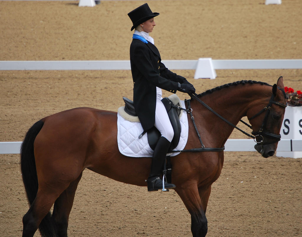 Dressage 22 by equinestudios