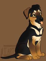 German Shepherd Pup by Tartii
