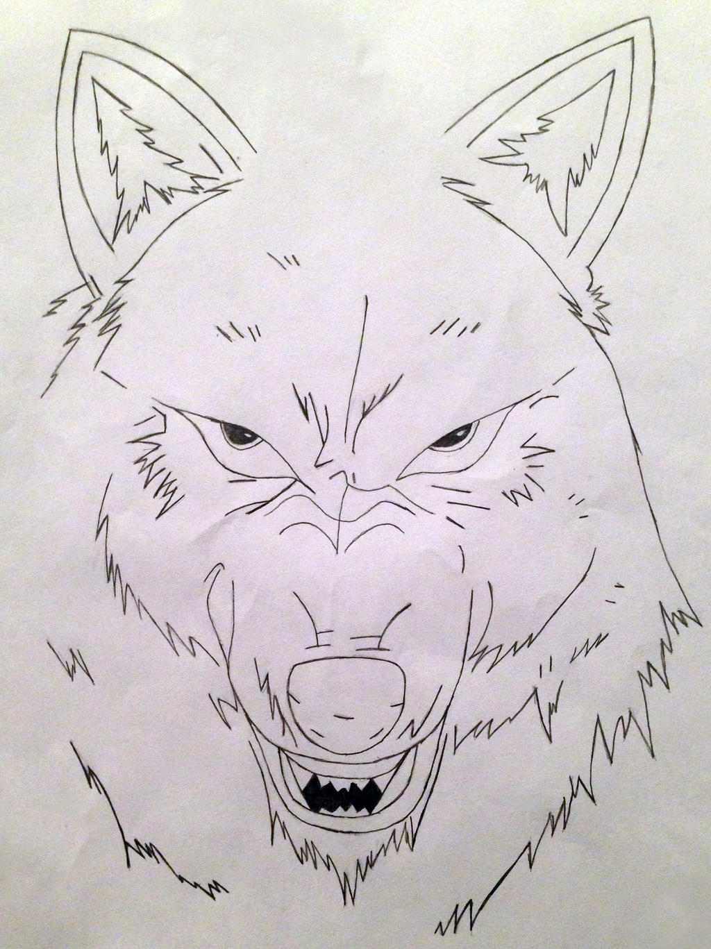 Wolf Snarling Drawing
