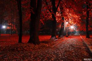 Zavoi Park by RaduCretu