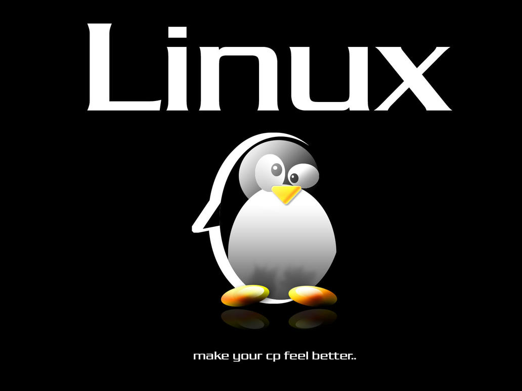 Linux by mashsmelo