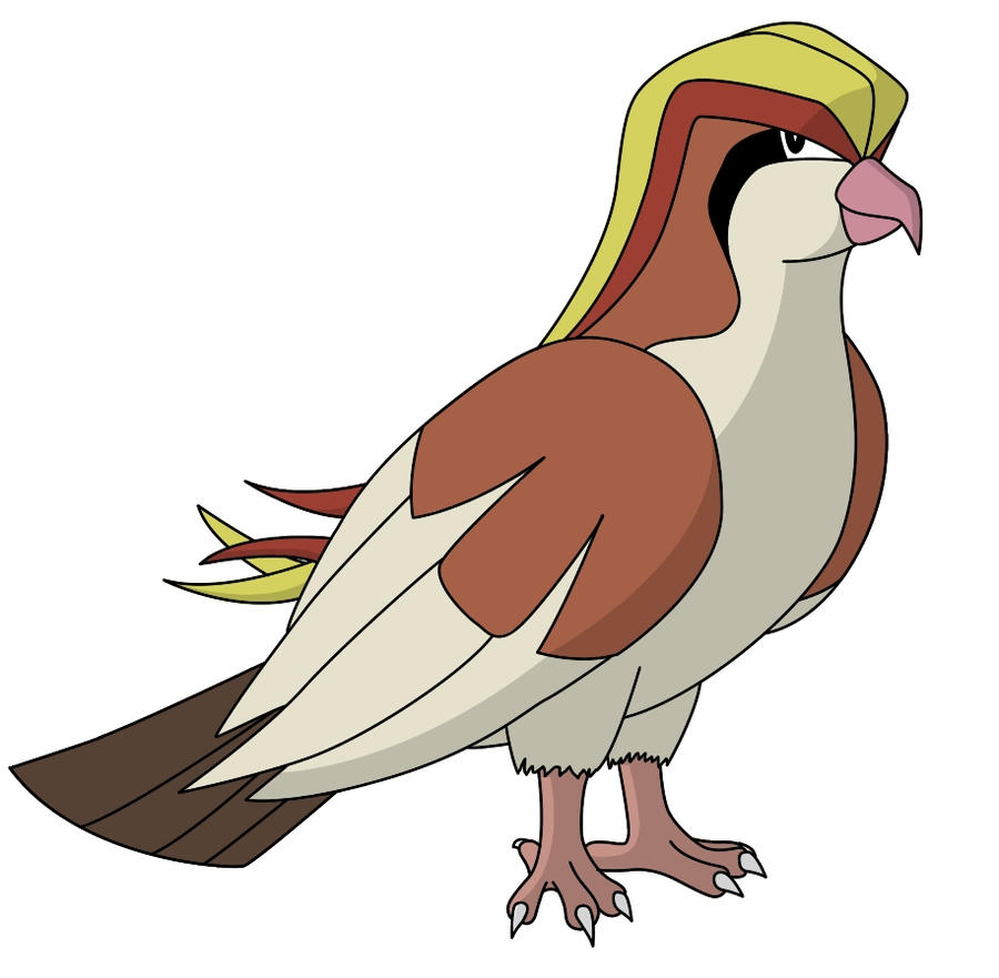 Pidgeot - Pokemon X and Y Wiki Guide - IGN