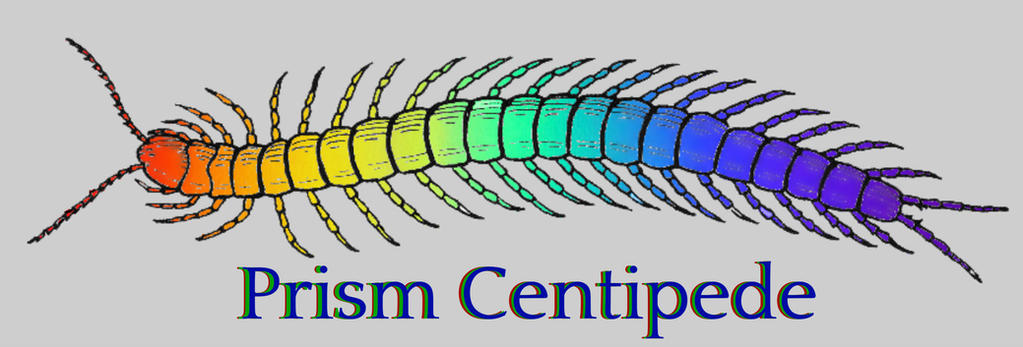Prism Centipede by 18skorpina