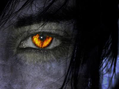 Eye of the Lycan - OBTC by dariusberne