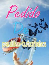 pedido de pauliko-tutoriales by KatiiZ