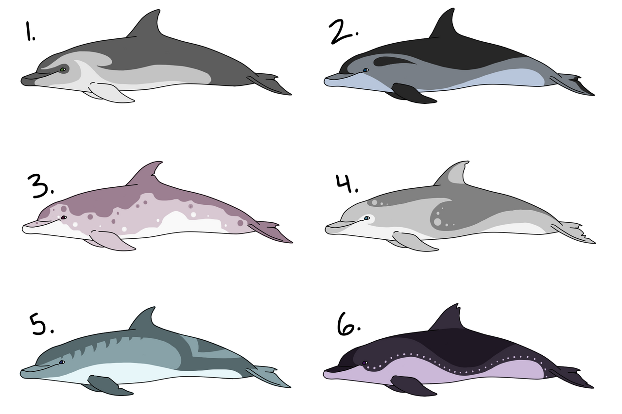 Bottlenose Dolphin Adoptables 1 - CLOSED by lissodelphis ...