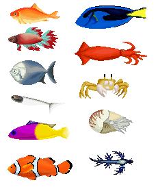 Fishie by mokia-sinhall