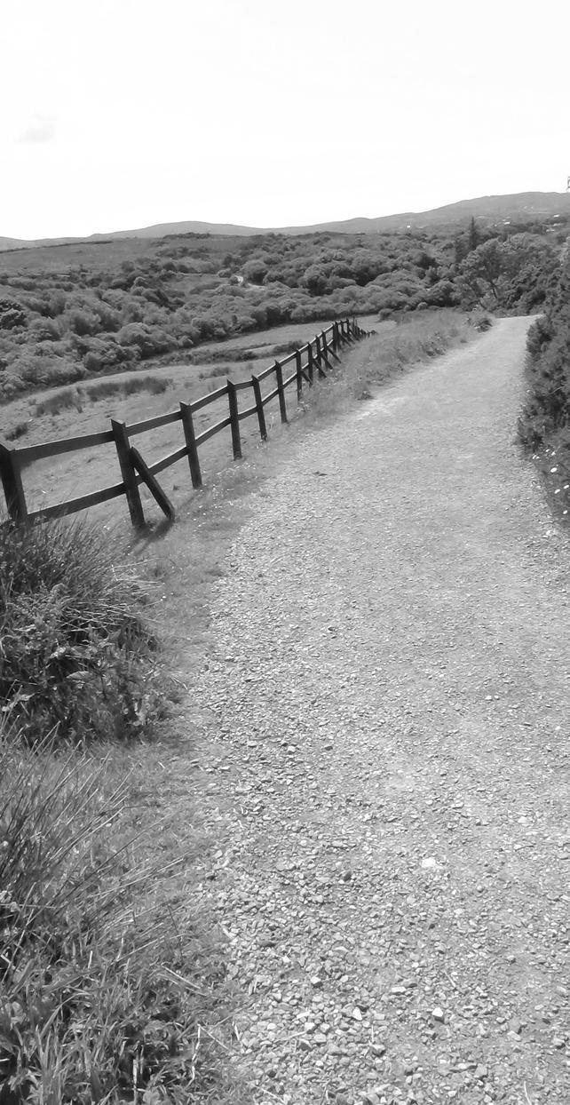 Connemara national park by h2j