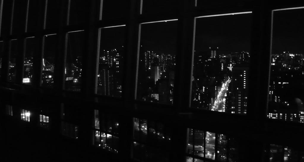 Shinjuku by night (from Tokyo tower) by h2j