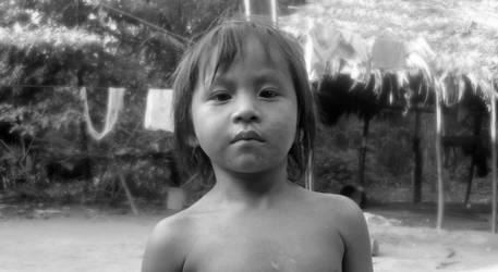 indiecito de la selva Comunidad navidad de Manu