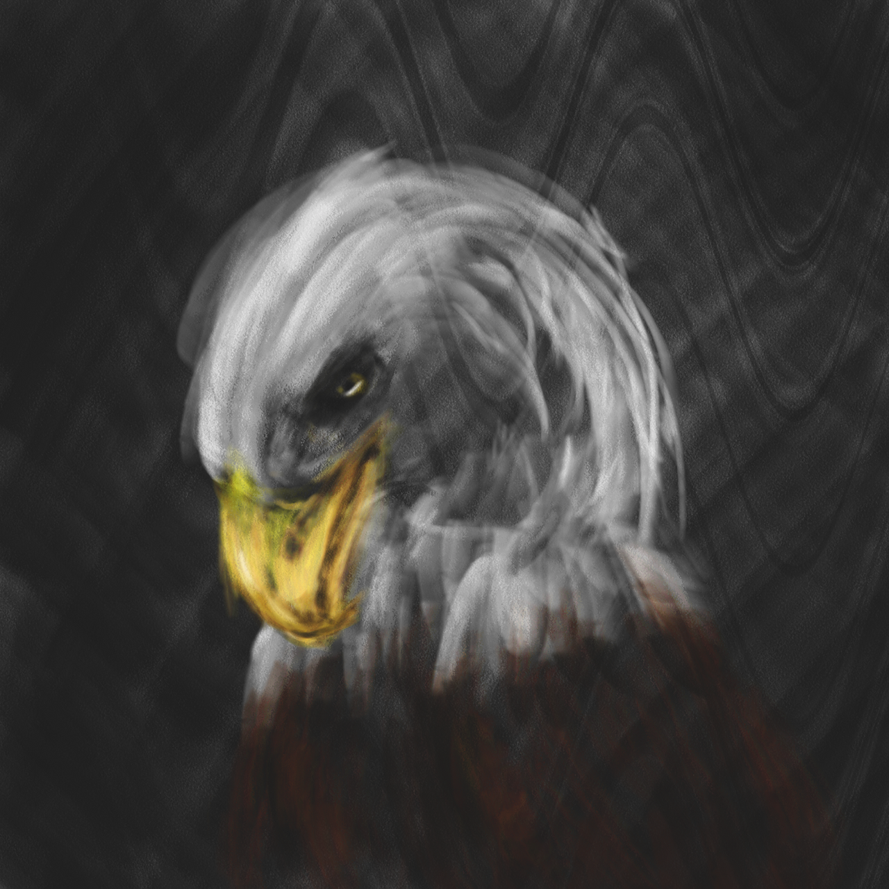 the dark eagle All eagles are renowned for their excellent eyesight, and the bald eagle is no exception which can locate prey in the dark only by their sound.