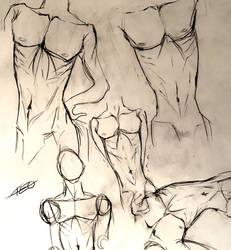 Male torso practice/study thingie