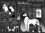 Blair {Ponysona} 2.0 //EDITED\\ 2018
