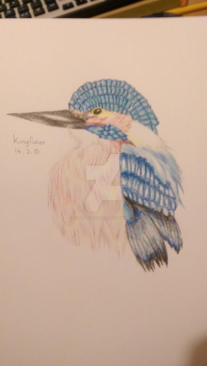The Kingfisher by Scorpio-Mayu2Sempai