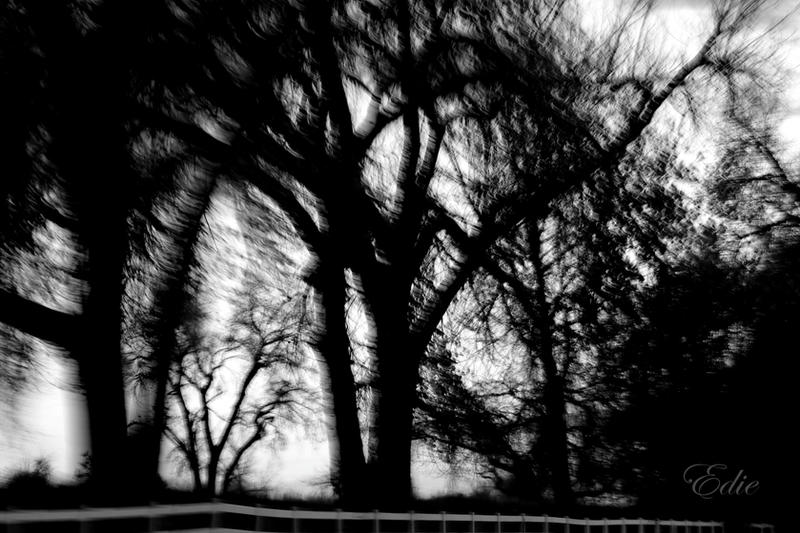 Sleepy Hollow by 1001G