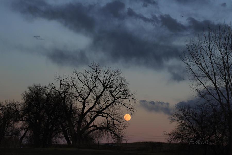 Bad Moon Rising by 1001G
