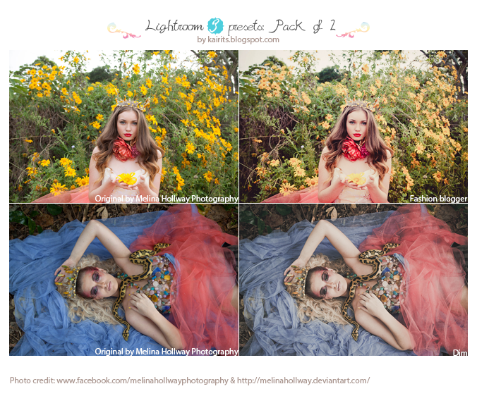 Lightroom 3 presets: Pack of 2 by CrazyMurdock1