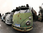 Old VW Transporter vans 1