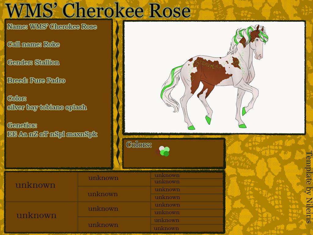 WMS' Cherokee Rose (Roke) ID#: 1893 by Feya-san