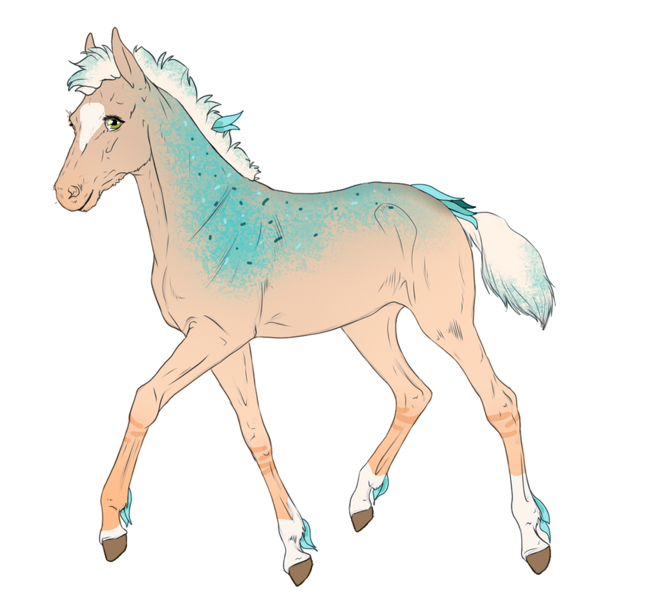 4852 - Foal Design by Feya-san