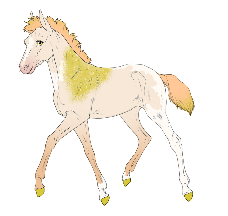 6230 - Padro Foal Design by Feya-san