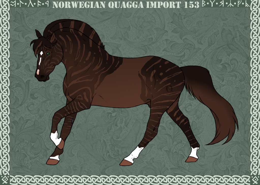 Norwegian Quagga | Import | #153 by Feya-san