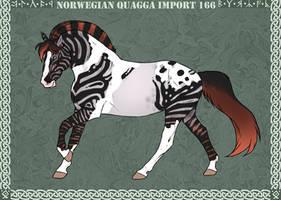Norwegian Quagga   Import   # 166 by Feya-san