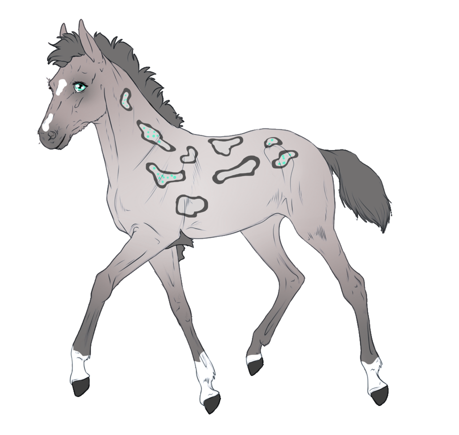 7865 - Padro Foal Design for RedRobinEC by Feya-san